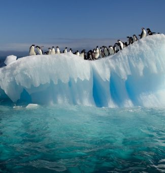 Cambio Climático, Calentamiento Global y Efecto Invernadero