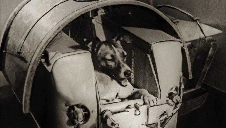 Sputnik 2 con Laika a bordo